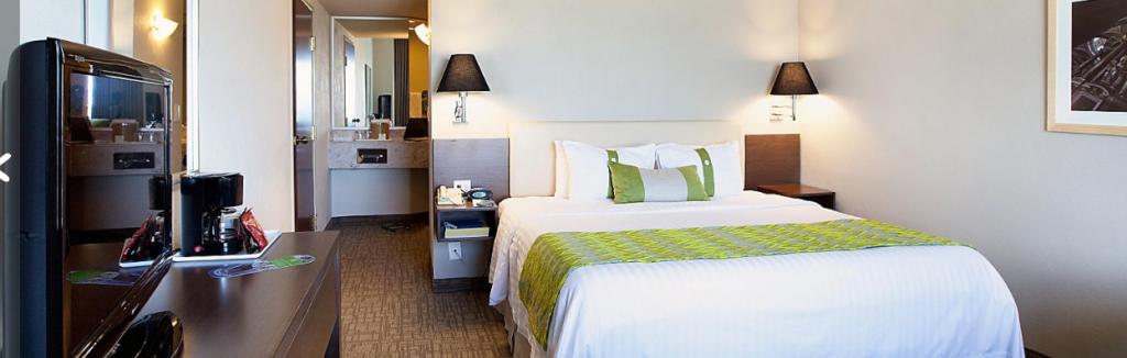 Holiday Inn Puebla Hotel Petfriendly